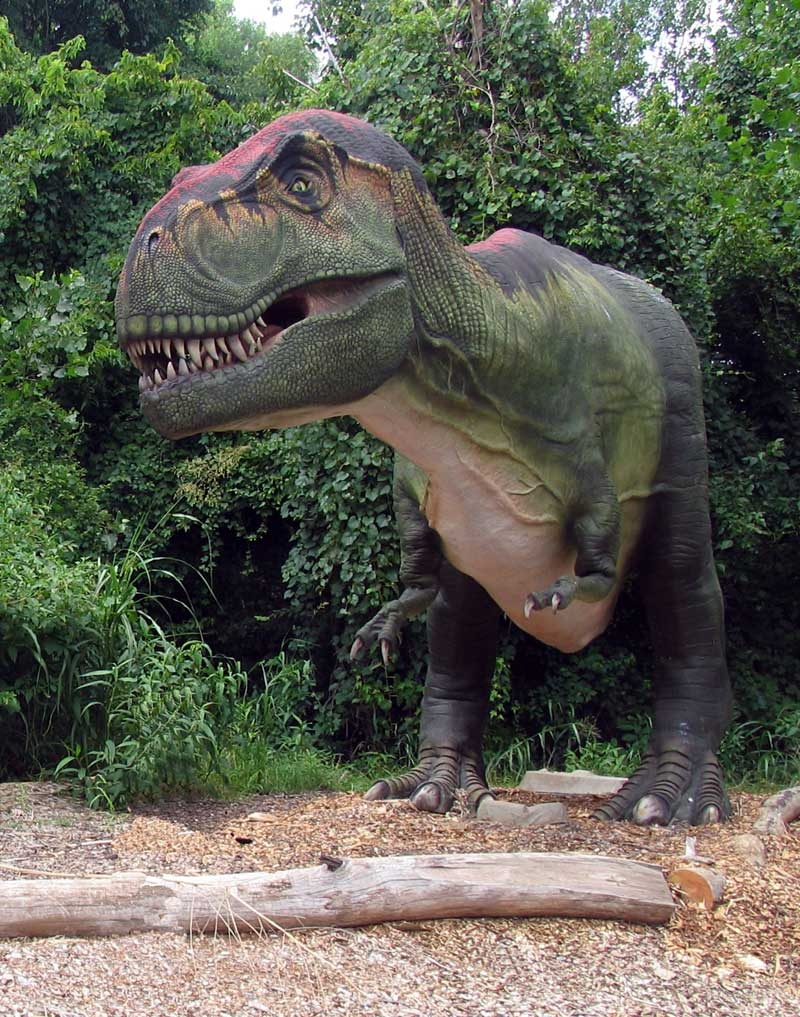 Real Dinosaurs T Rex Dinosaurs Are N...