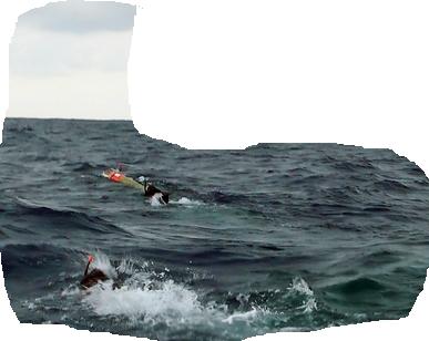 ocean-swimmer3